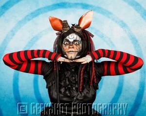 Rabbit19p