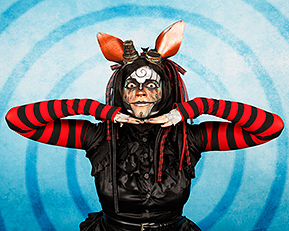 Rabbit19