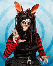 Rabbit20